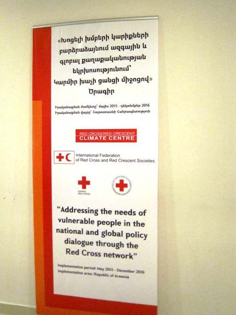 """Addressing the needs of vulnerable people in the national and global policy dialogue through the Red Cross network"" Project"