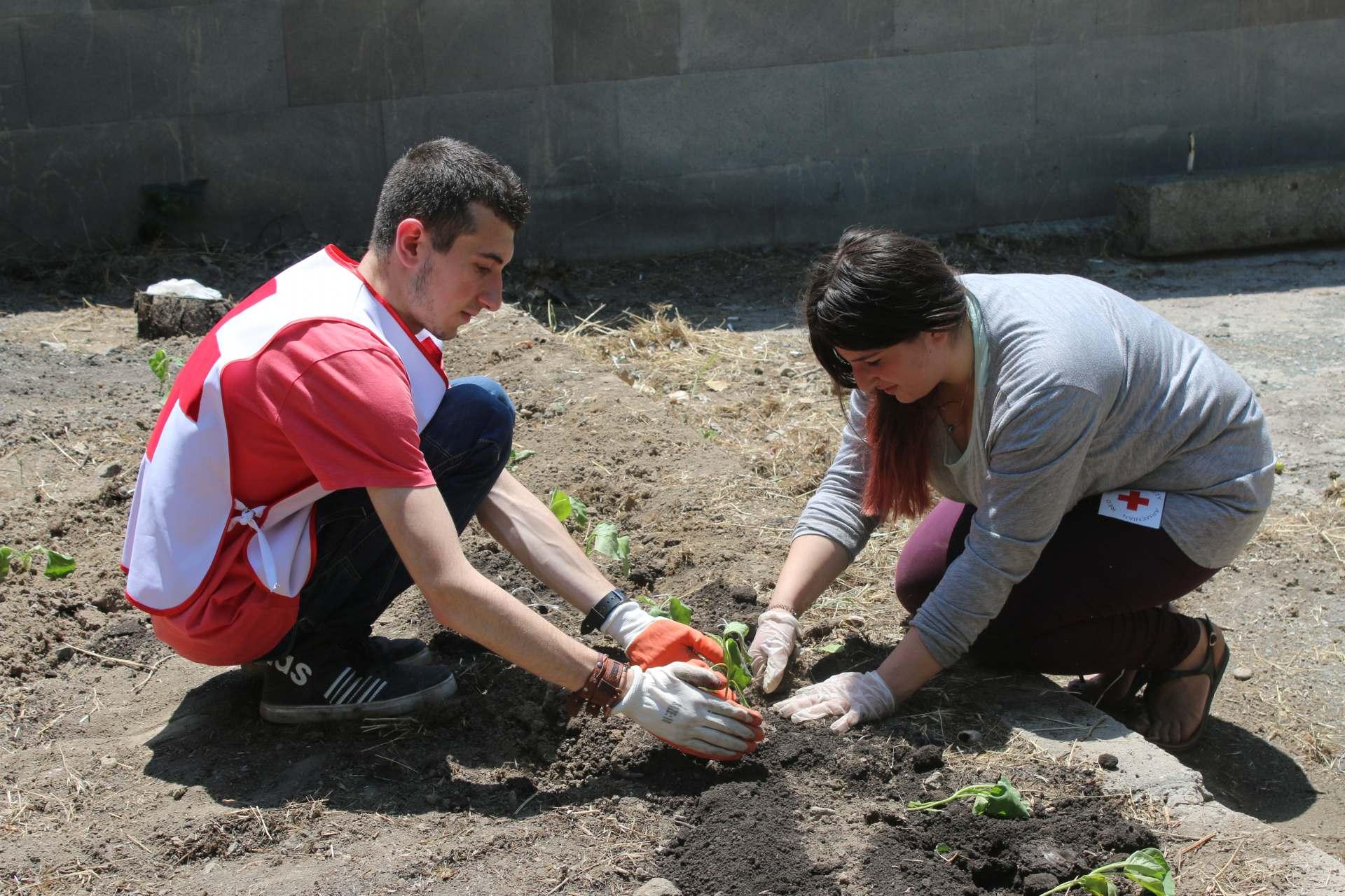 Սիրիահայ երեխաների կայուն զարգացումը Հայաստանում